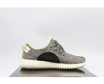 Adidas Originals Yeezy Boost 350 Turteltaube/Blugra/Kern Weiß AQ4832